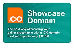 .co Showcase Domain